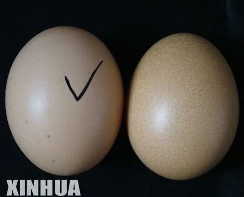 Beware of Fake Chinese Eggs