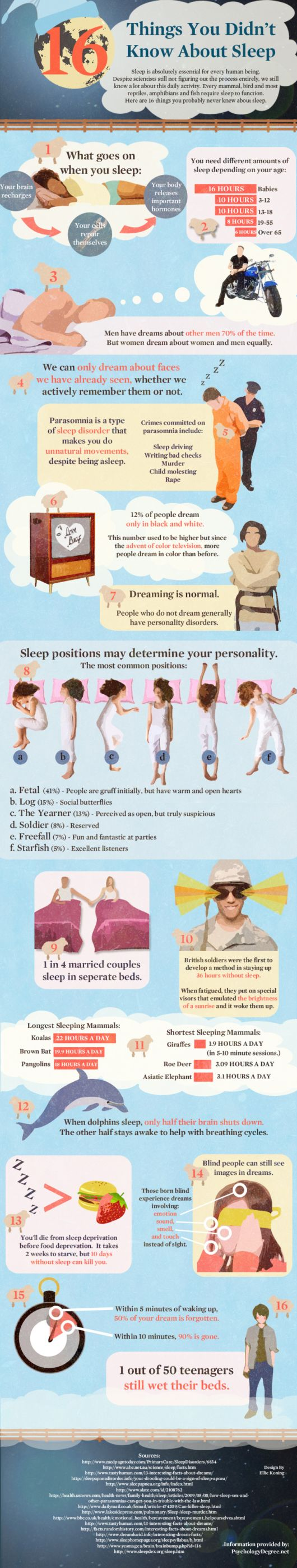 Things You Didnt Know About Sleep