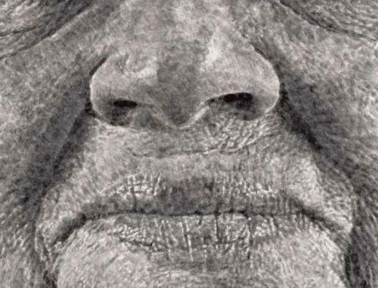 Portrait Made Of Thousands Of Fingerprints