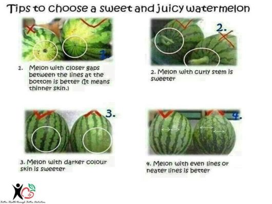 Tips To Choose A Sweet Water Melon