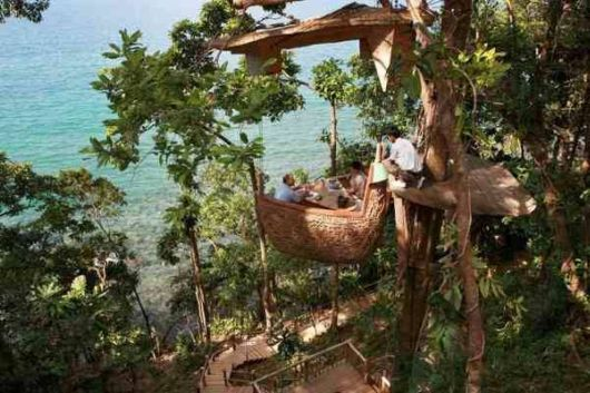 An Unusual Restaurant At The Treetop