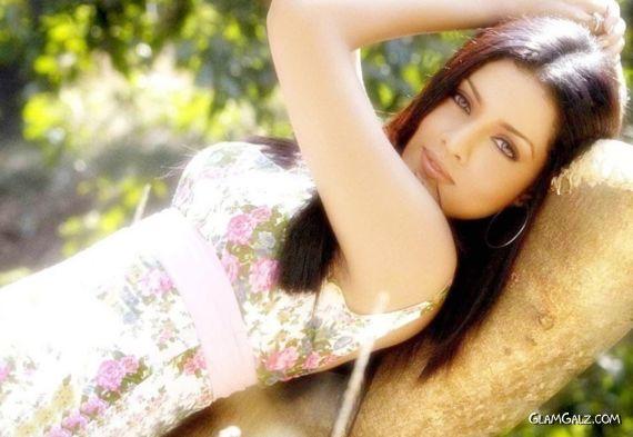 Gorgeous Indian Beauty Celina Jaitley