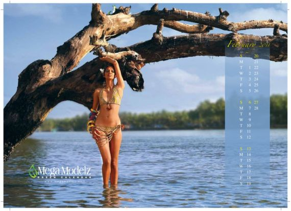 Click to Enlarge - Indian Earth Hour 2010 Galz Calendar