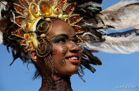 Rio Carnival 2010 Excellent Photography
