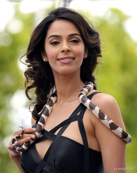 Snakewoman Mallika Sherawat in Cannes