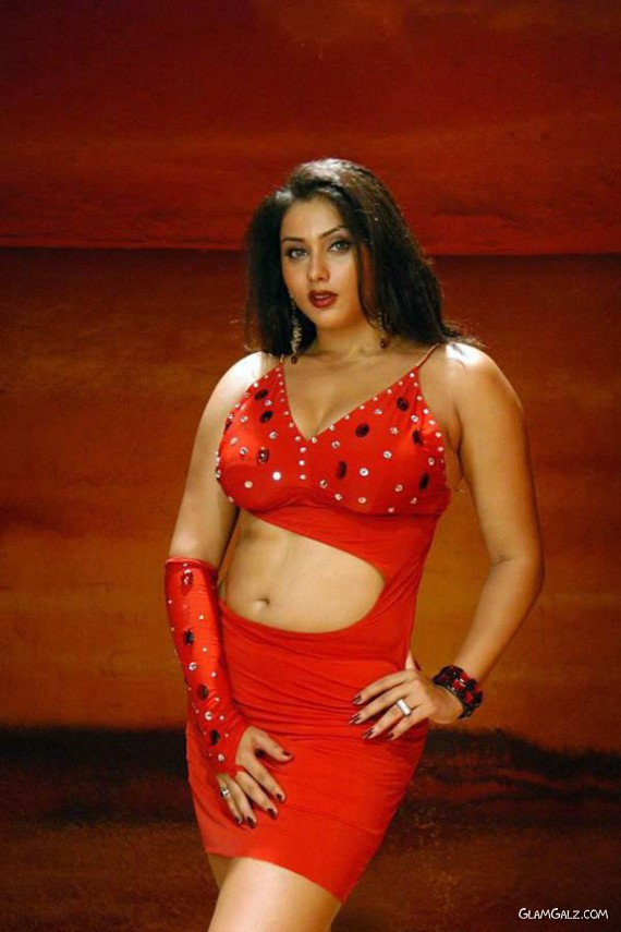 Famous Tollywood Beauty Namitha