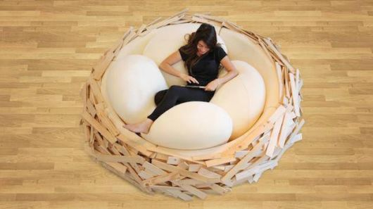 Relaxing In Bird Nests